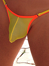 Coyote Bikini Yellow Orange